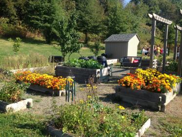sch garden arps2